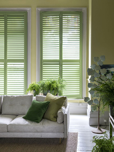 Rainbow Colored Shutters: Green